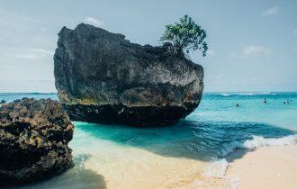 ビーチの岩